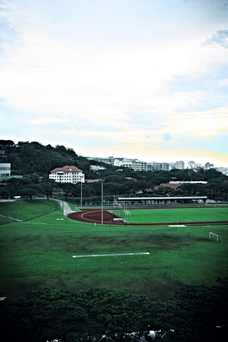 NUS Field