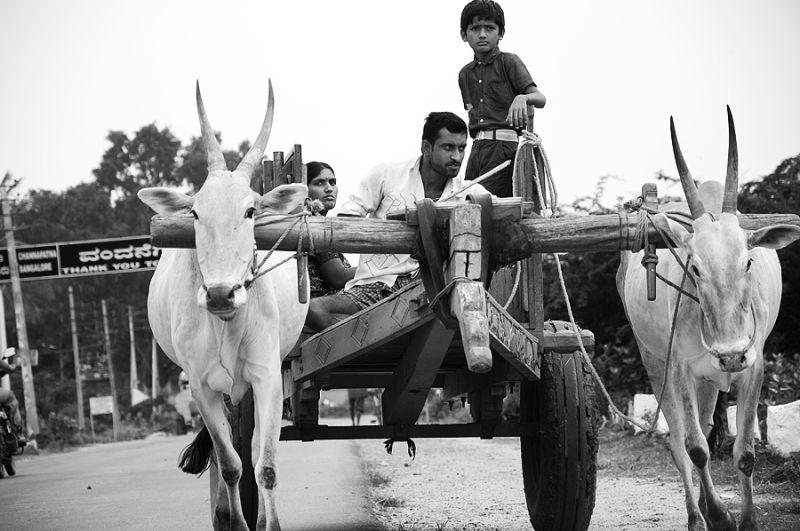 Rural Indian Ferrari