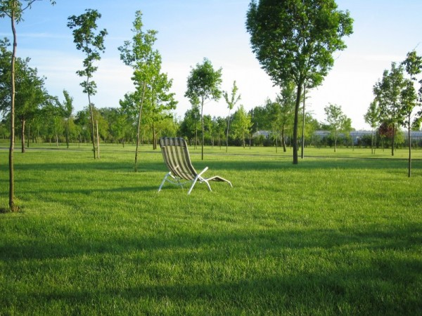 chair alone green peace hungary