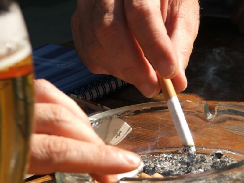 Smokeing Nagyvárad romania hundray porcsin summer