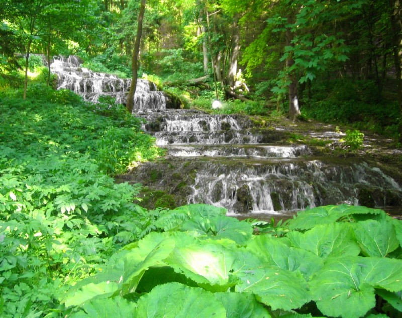 szalajka waterfall green nature hungary 2008 szilv