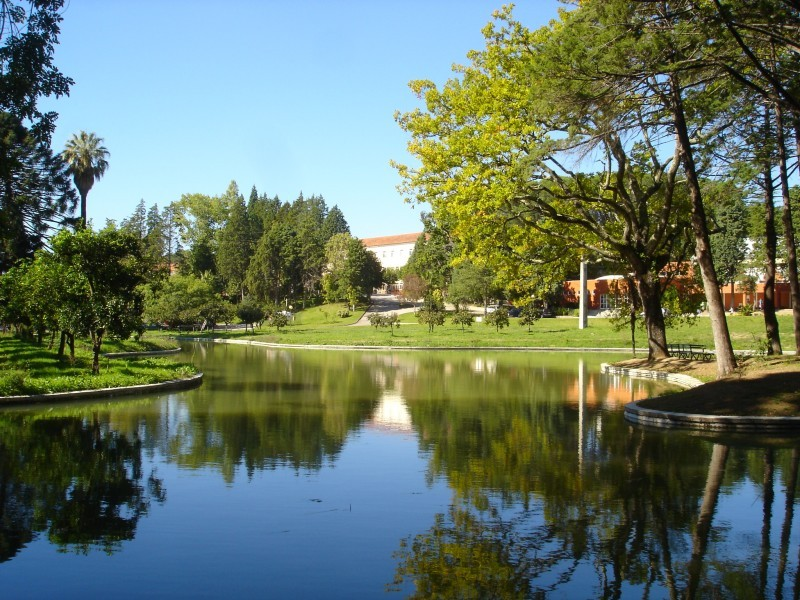 Uma escola e um lago