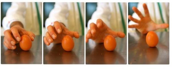 colombus' egg