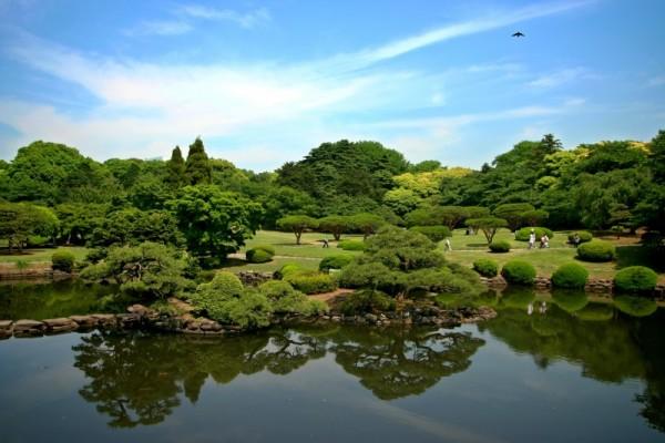 Japanese Garden at Shinjuku Gyoen, Tokyo