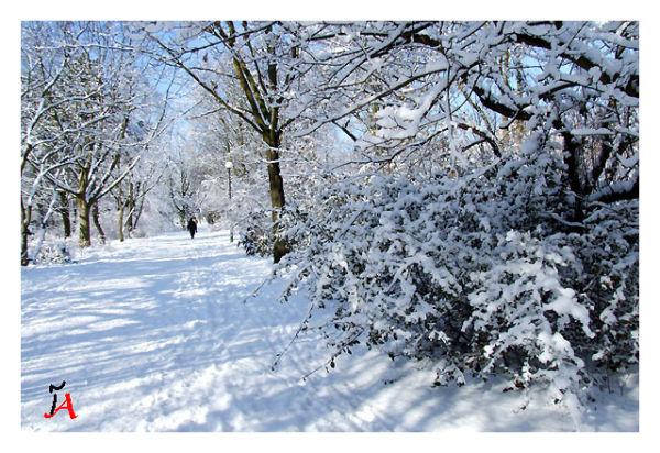 gilemard snow berlin