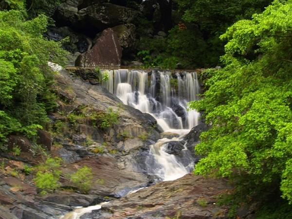 Surprise creek falls