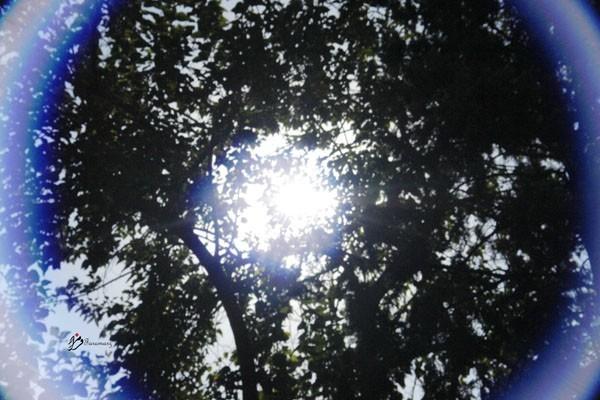Shining...