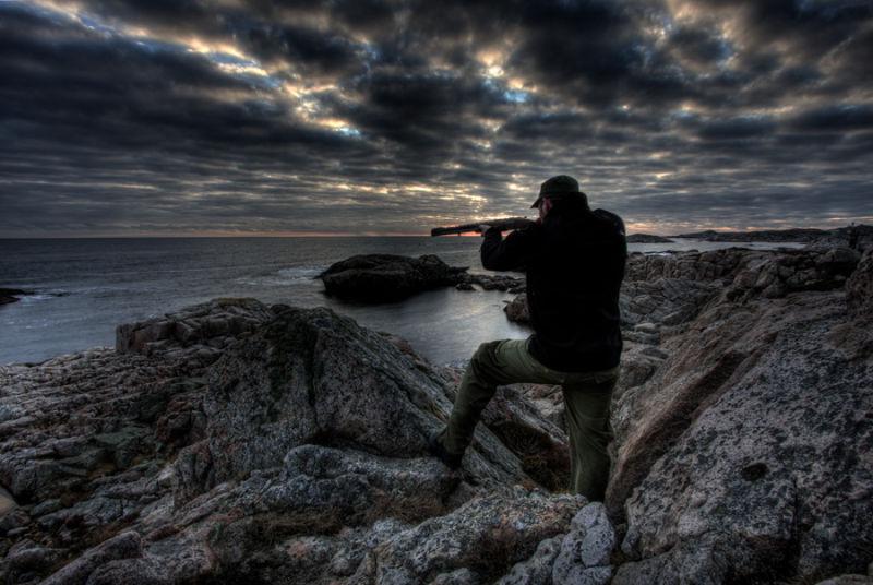 Hunting seabirds