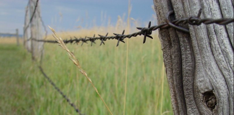 A South Dakota fence