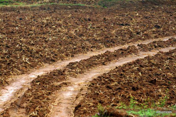 Land ready for farming