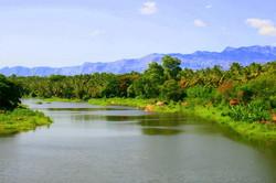 Sokanasini River of Chittur-Tattamangalam