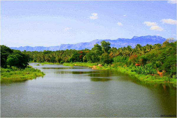 Sokanasini River of Chittur Tattamangalam