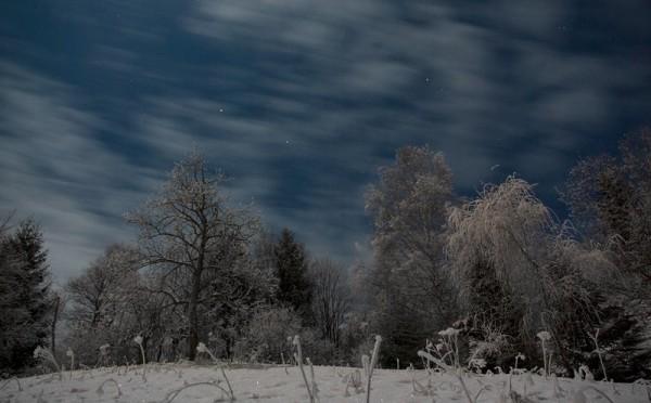 Midnight Moonlight, part 2