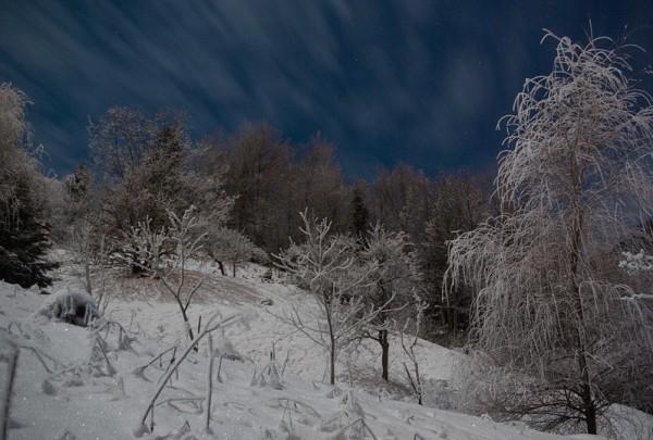 Midnight Moonlight, part 4
