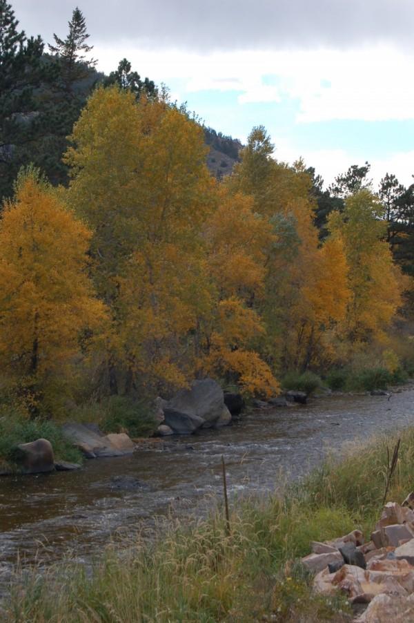 Fall in Rokcy Mountain,Co