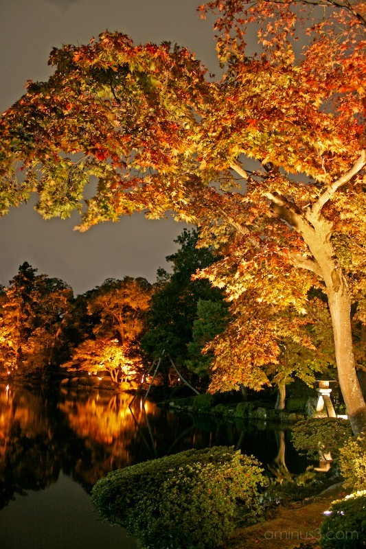 Autumn night photography of Kenrokuen garden Japan