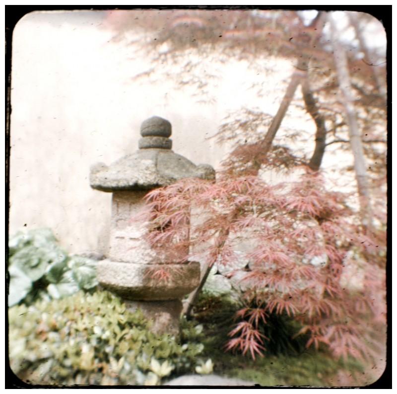 TtV photo of a Japanese lantern and tree, Kanazawa