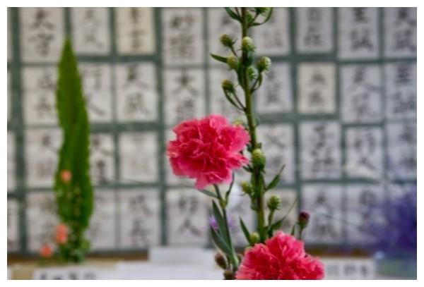Japanese flower arrangement infront of Exhibition