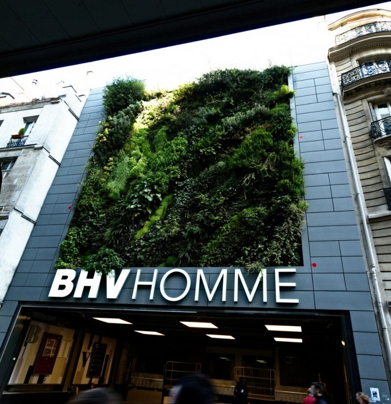 Mur vegetal, Paris