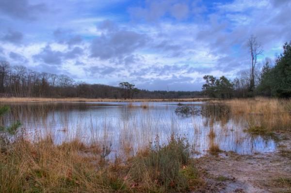 kootwijkerveen, Veluwe Park