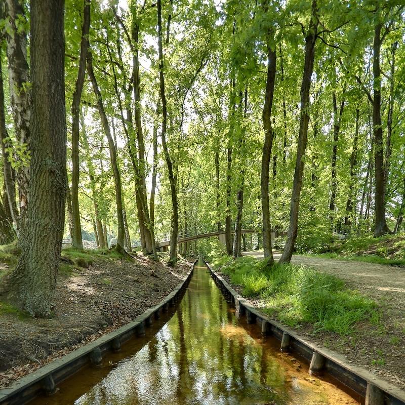 Zwaanspreng, Dubbelbeek, Apeldoorn