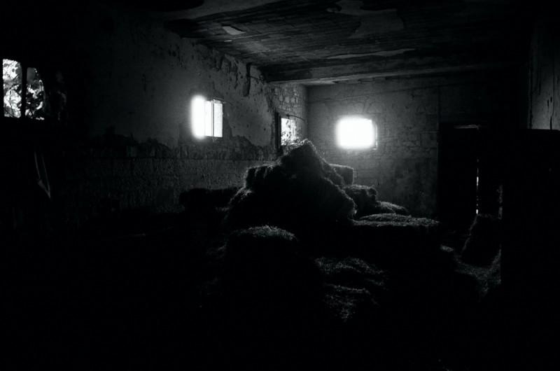 old sheep barn