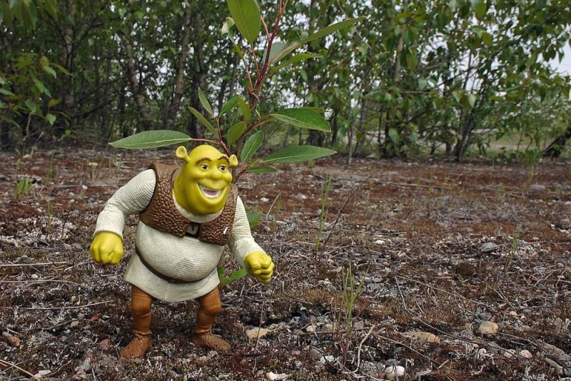 Shrek Returns