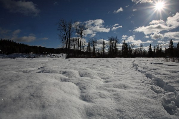 Trekking Through The Snow