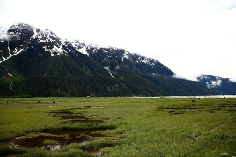 The Tidal Flat and the Mountain