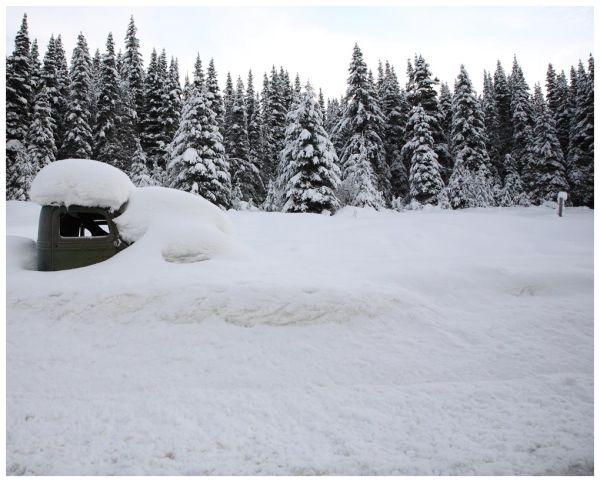 Frosty Windshield