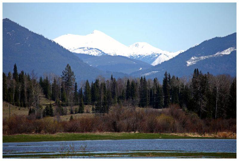 Melting Mountain Snow