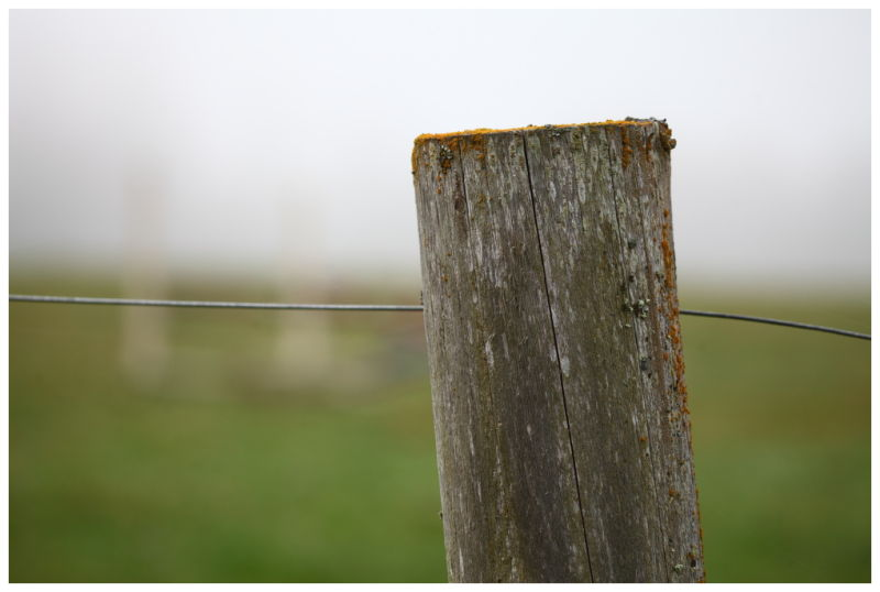 Fence Wire on a Foggy Day