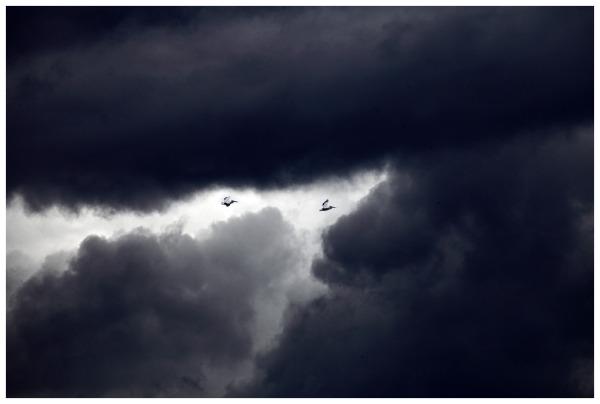 Stormy Flight