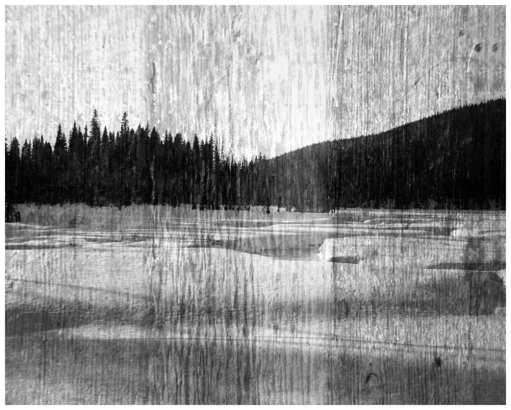 Landscape In Hardwood