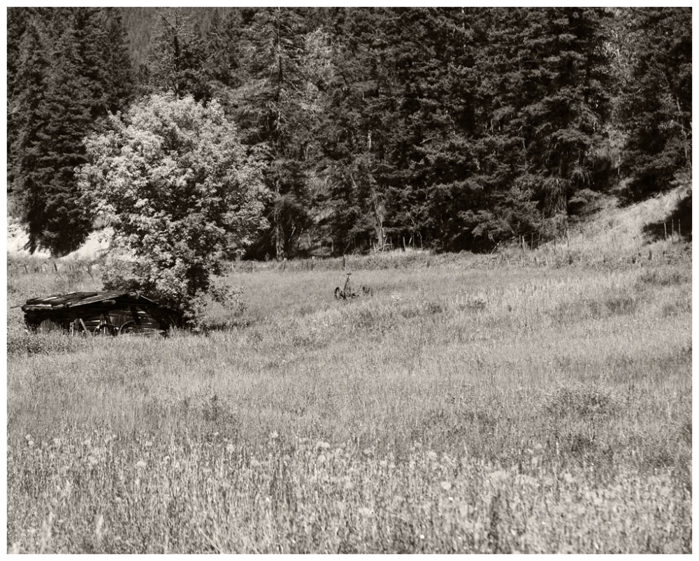 Hay Mower In The Grass