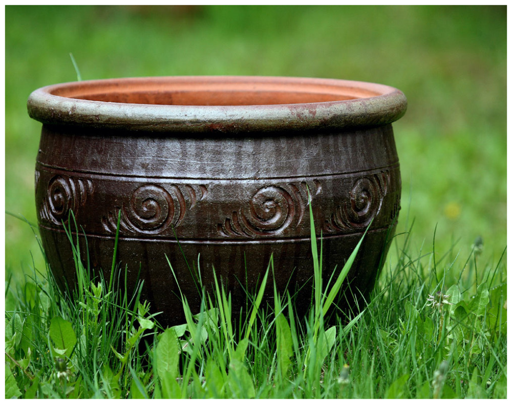 Bowl In Green