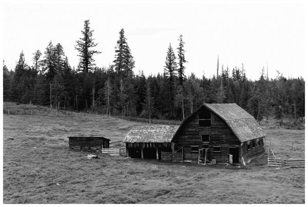 Barn - 1976