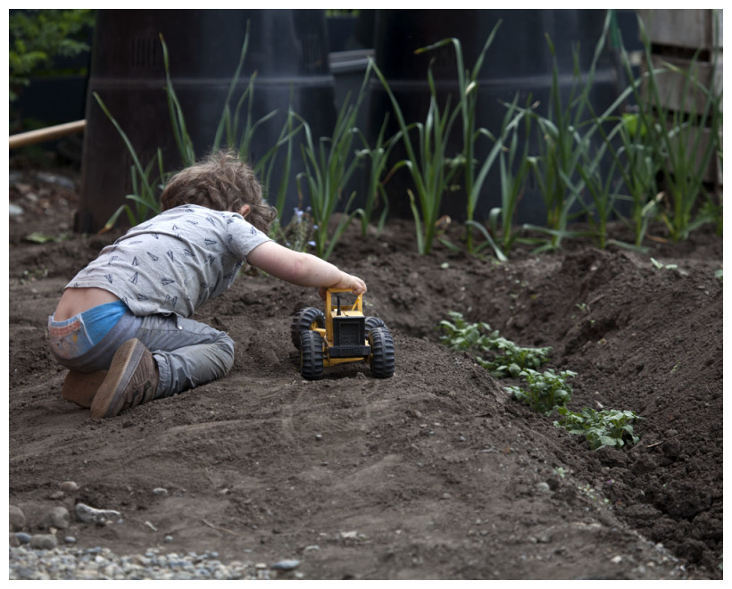 You Need The Right Equipment In The Garden