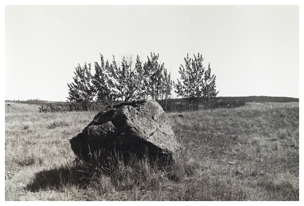 Shot in 1985 With Canon FT ql On Ilford FP4 Film