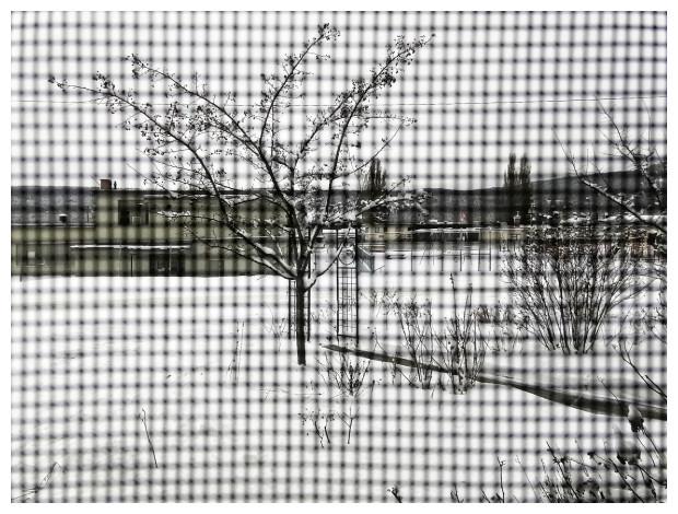 Winter Through A Window Screen