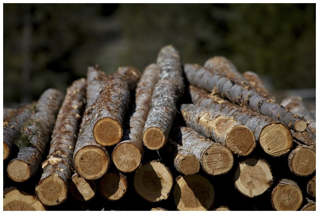 Thin Logs