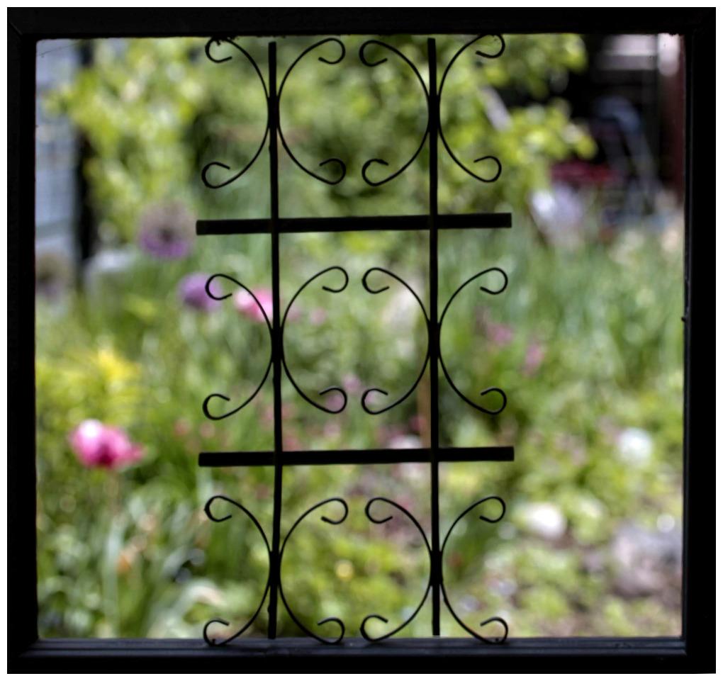 Peeking Through Our Garden Gate