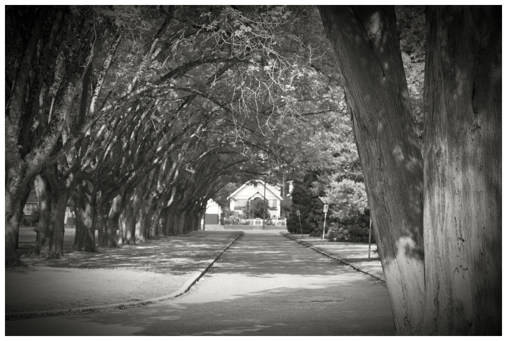 Looking Down The Street Two Years Ago