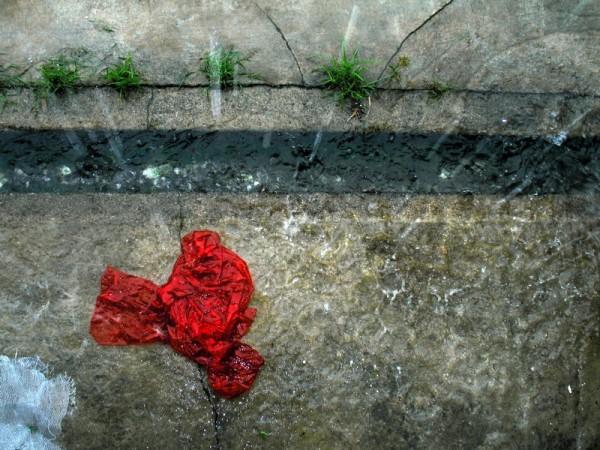 Rain & Red Plastic, Frame 339
