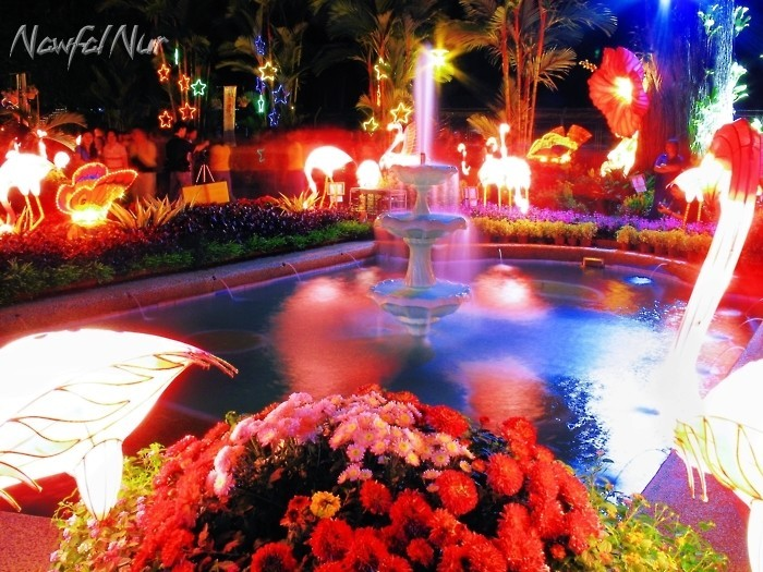 Lanterns, Flowers & Fountain