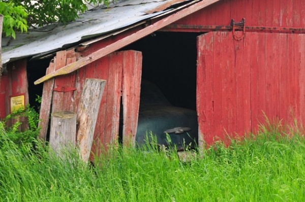 What's in your barn?