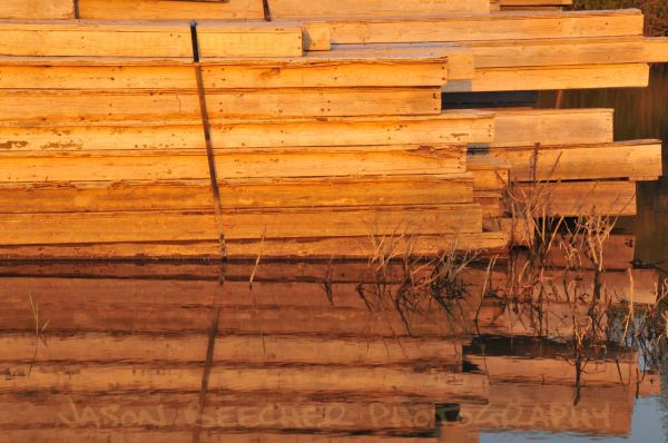 Stacked Wood Reflection