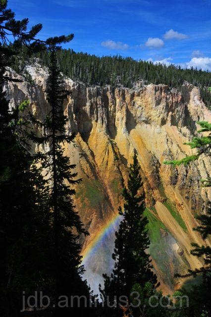 Yellowstone falls rainbow