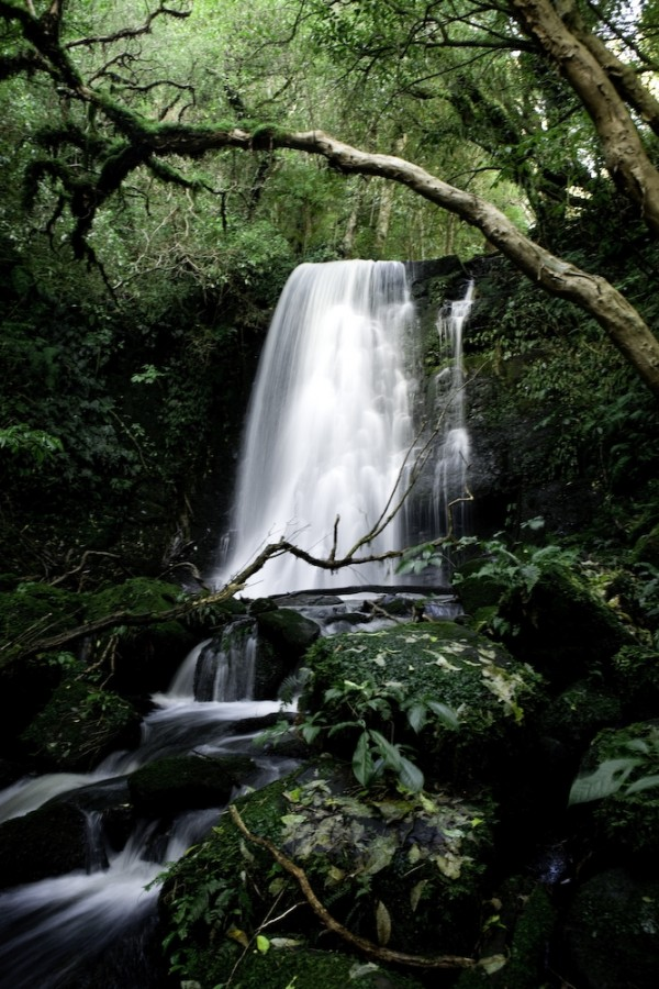 waterfall catlins
