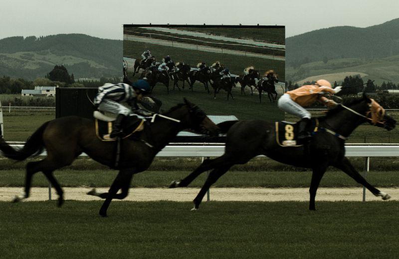horse race, melbourne cup
